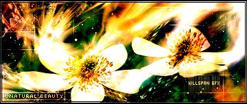 Flower Manipulation